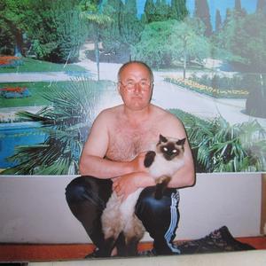 Александр, 67 лет, Новый Порт