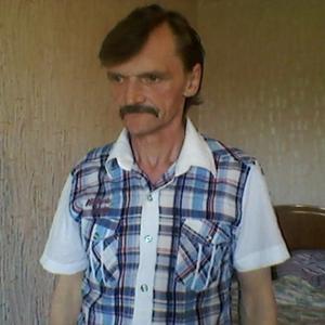 Николай Тюленев, 65 лет, Карабаново